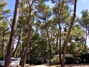 Camping Nature Bouches du Rhône