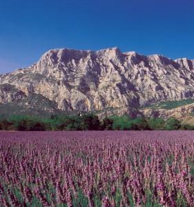 Camping le Devançon situé en pays d'Aix