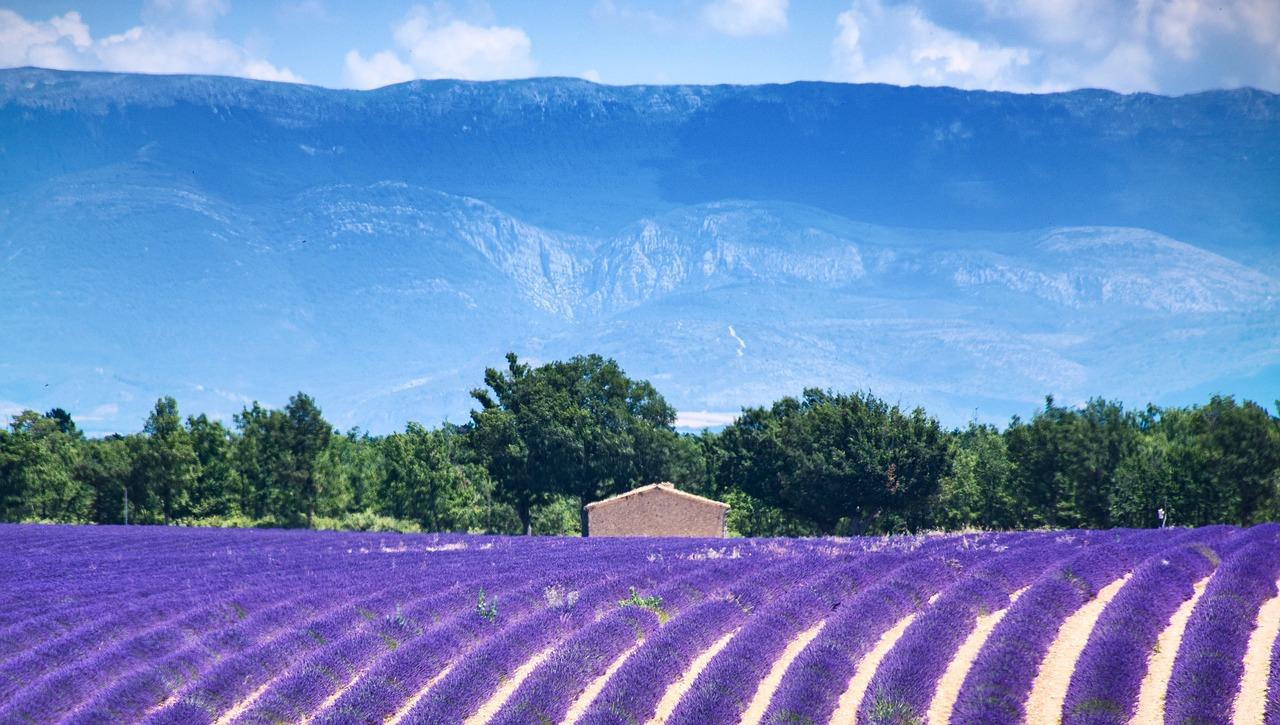 7 raisons de partir en vacances dans le sud de la France